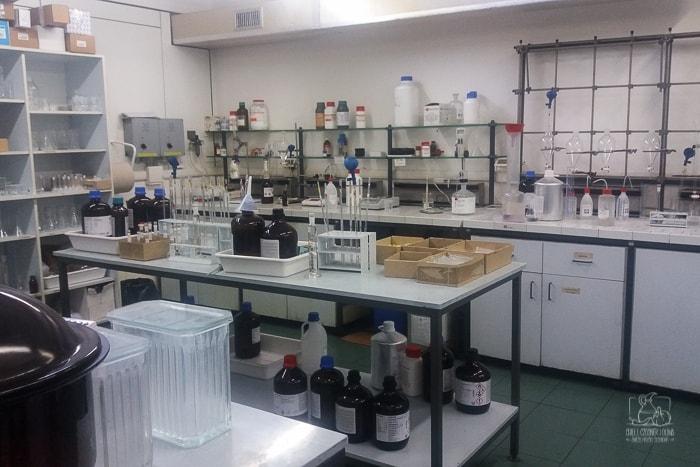 Jak powstaje oliwa z oliwek? Laboratorium